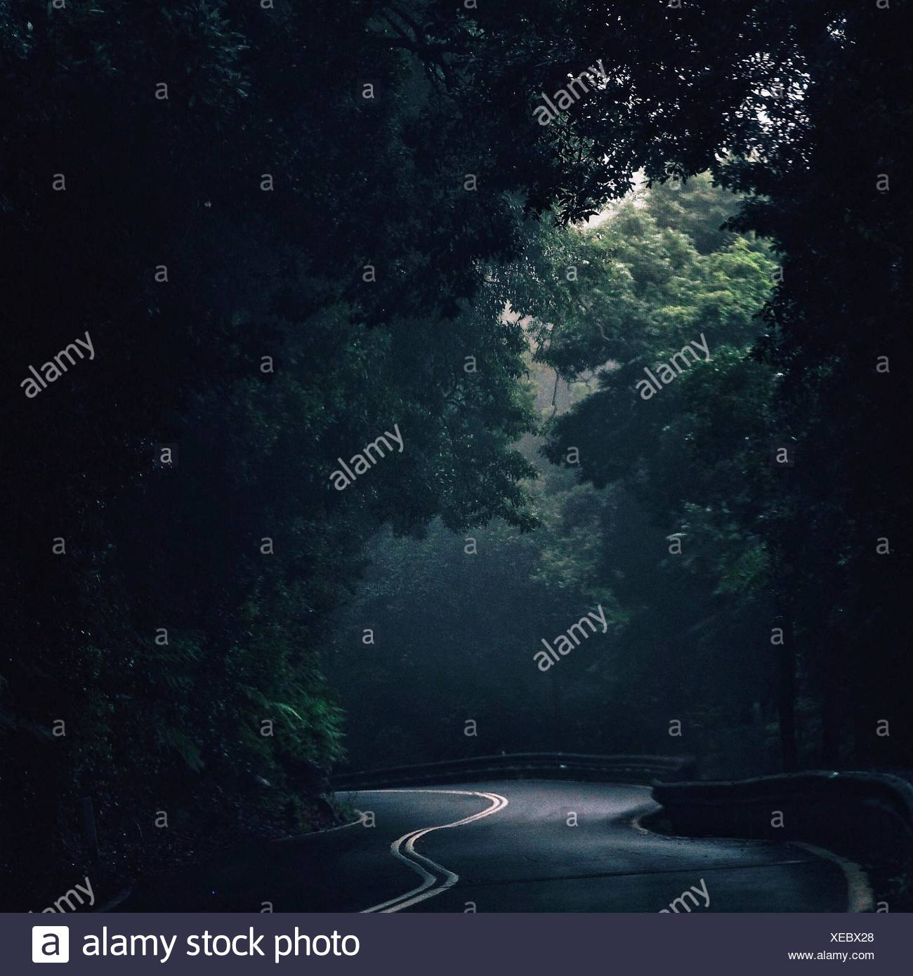 Empty Country Road - Stock Image