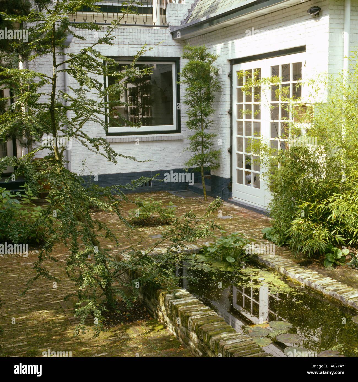 Rectangular brick edged pond and small trees in courtyard for Small trees for courtyard gardens