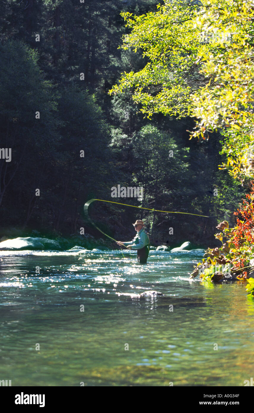 Man fly fishing for trout in northern california model for Trout fishing northern california