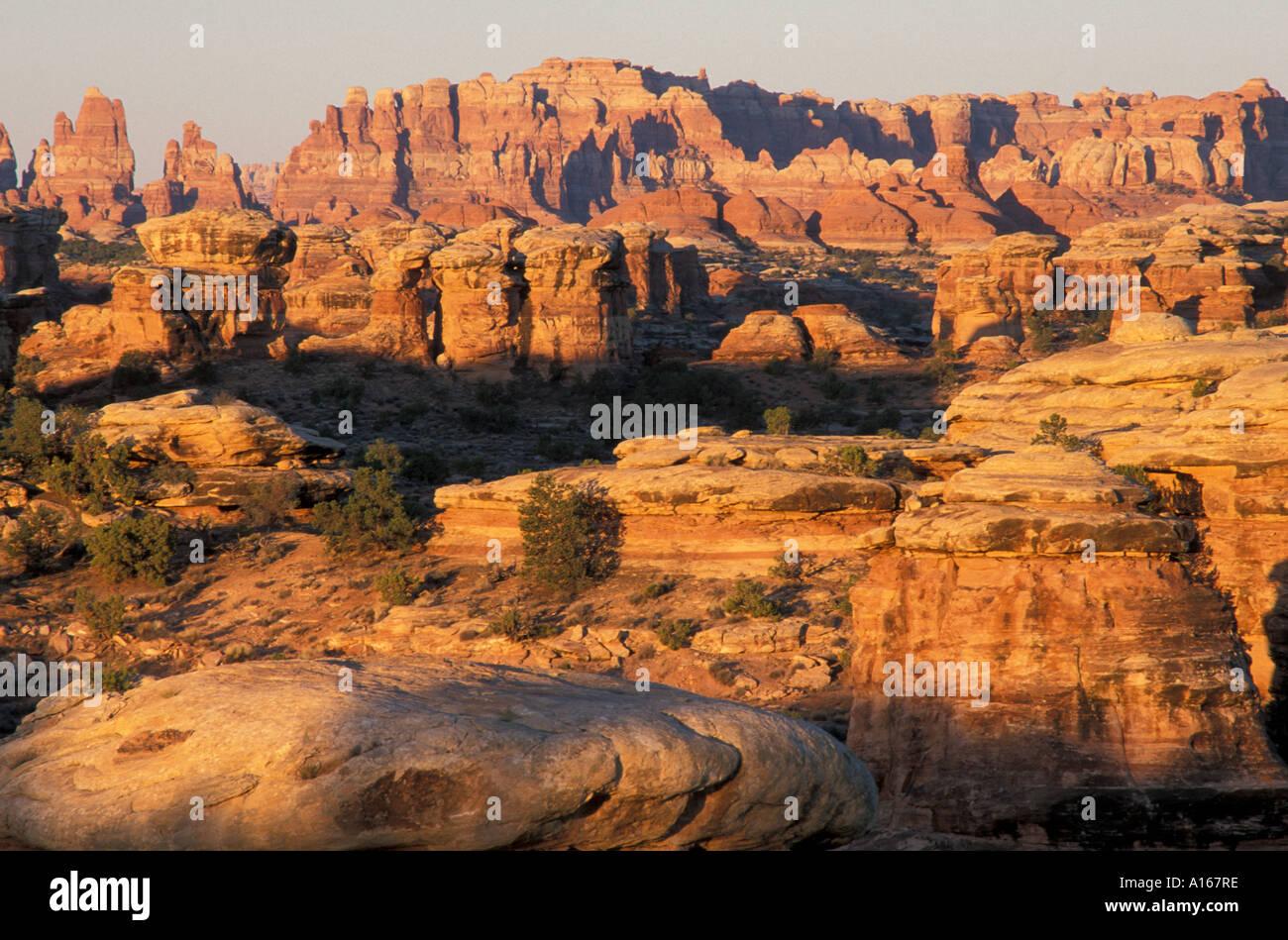 Canyonlands national park needles district