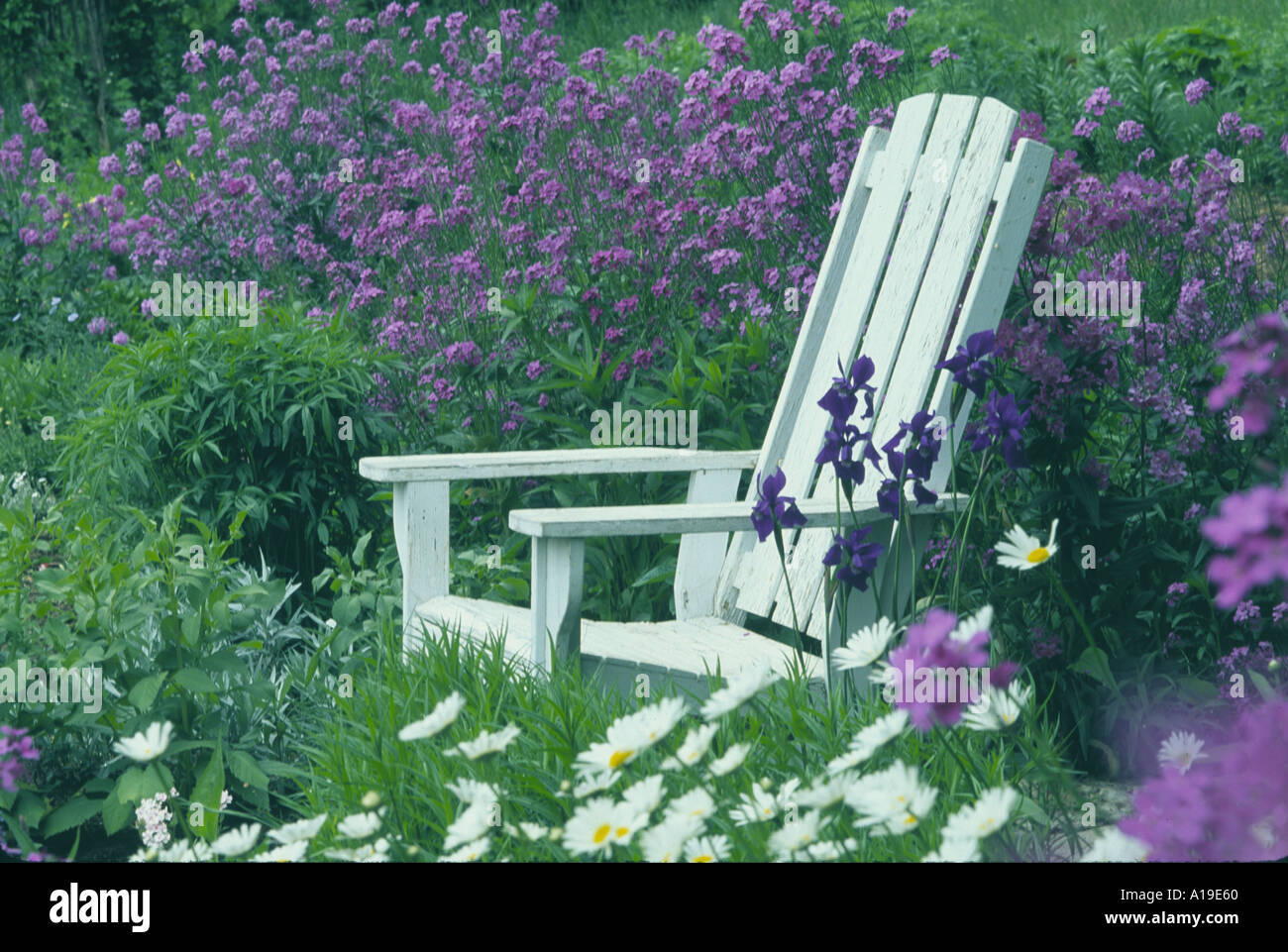 Her Garden Chair White Adirondack Chair In Group Of
