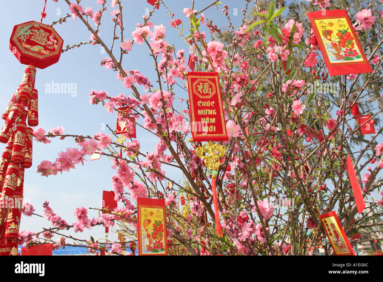 Stock Photo - California Orange County Westminster Little Saigon Happy New Year banners Asian culture