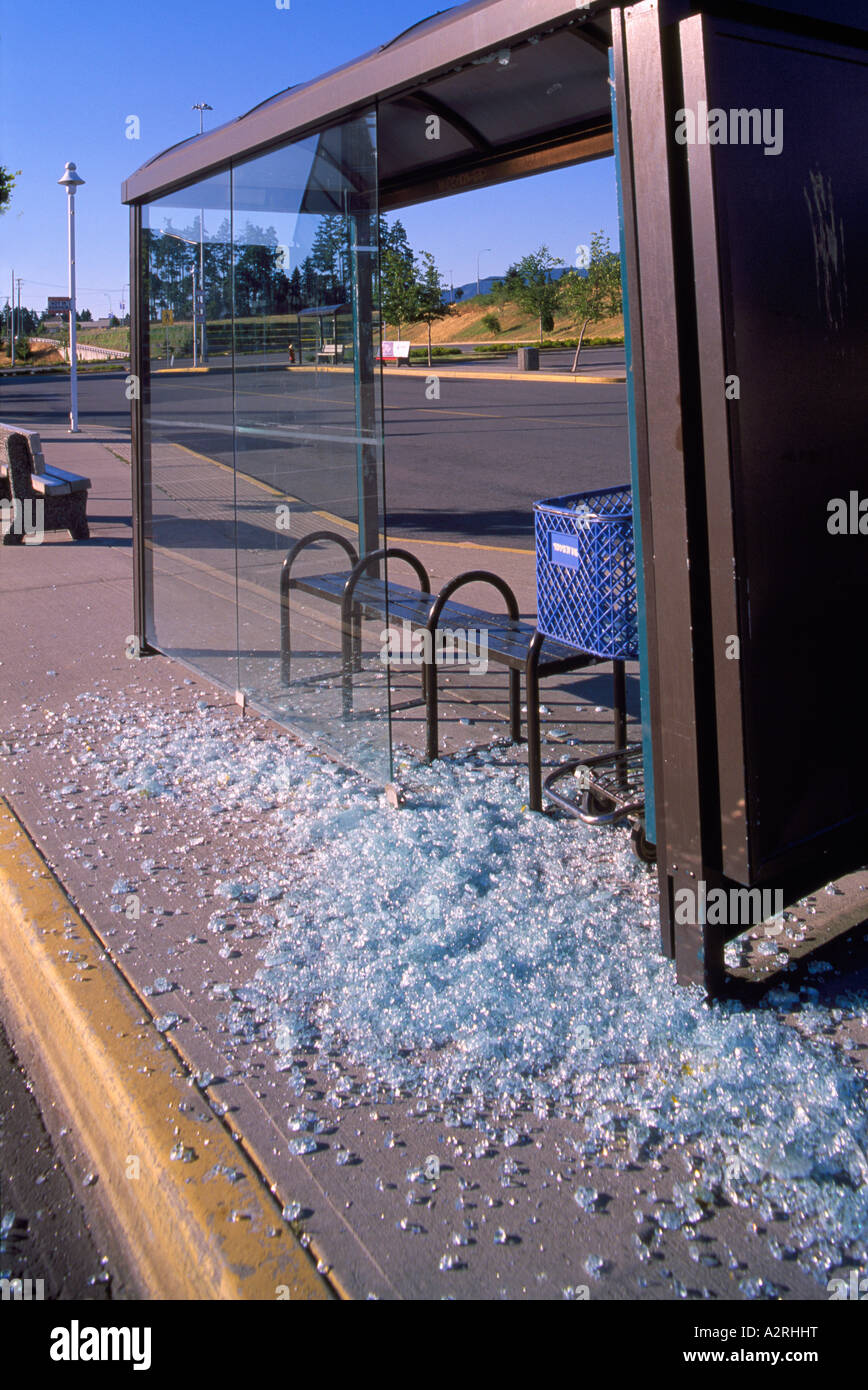 Bus Stop Shattered Glass