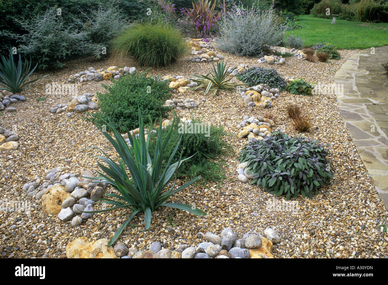 Gravel garden path lawn stones pebbles drought tolerant for Garden designs using pebbles