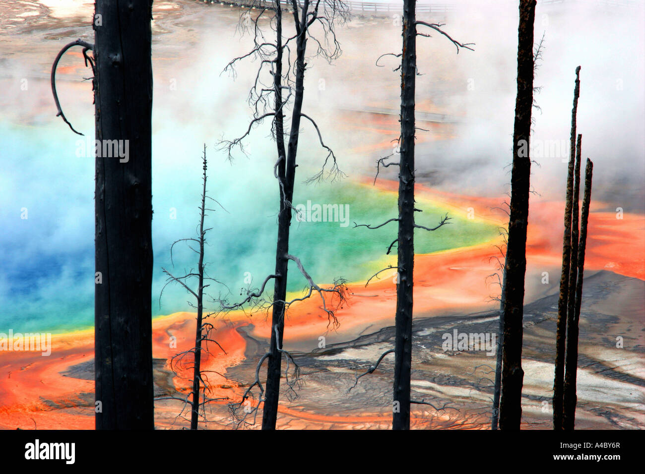 grand prismatic spring, midway geyser basin, yellowstone national park, wyoming Stock Foto