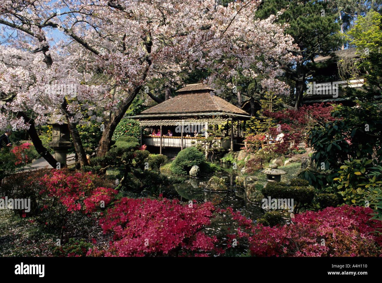 San Francisco California Tea Pavillion In The Japanese Tea Garden Stock Photo Royalty Free