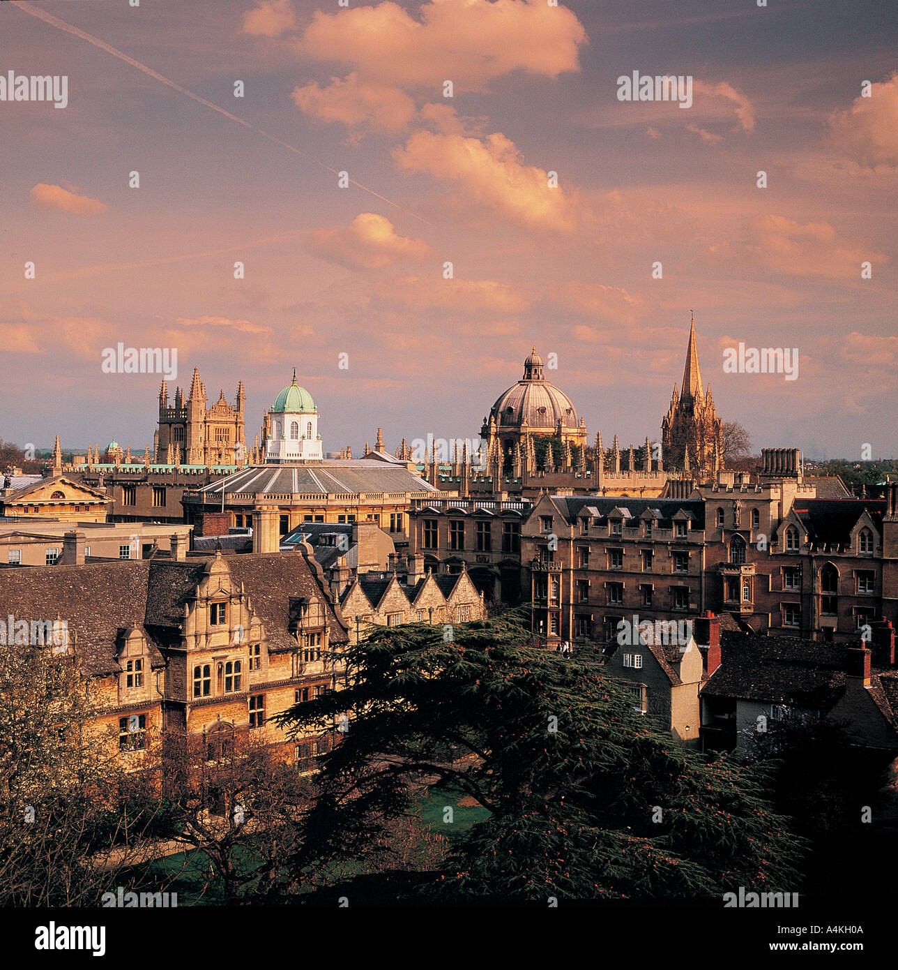 view-of-oxford-spires-from-trinity-colle