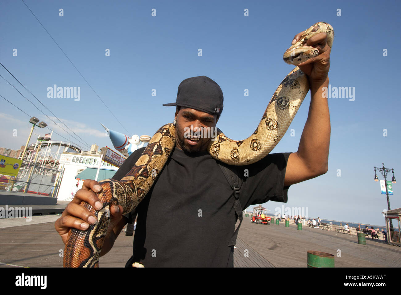 Man with pet python on the boardwalk at Coney Island Stock Foto