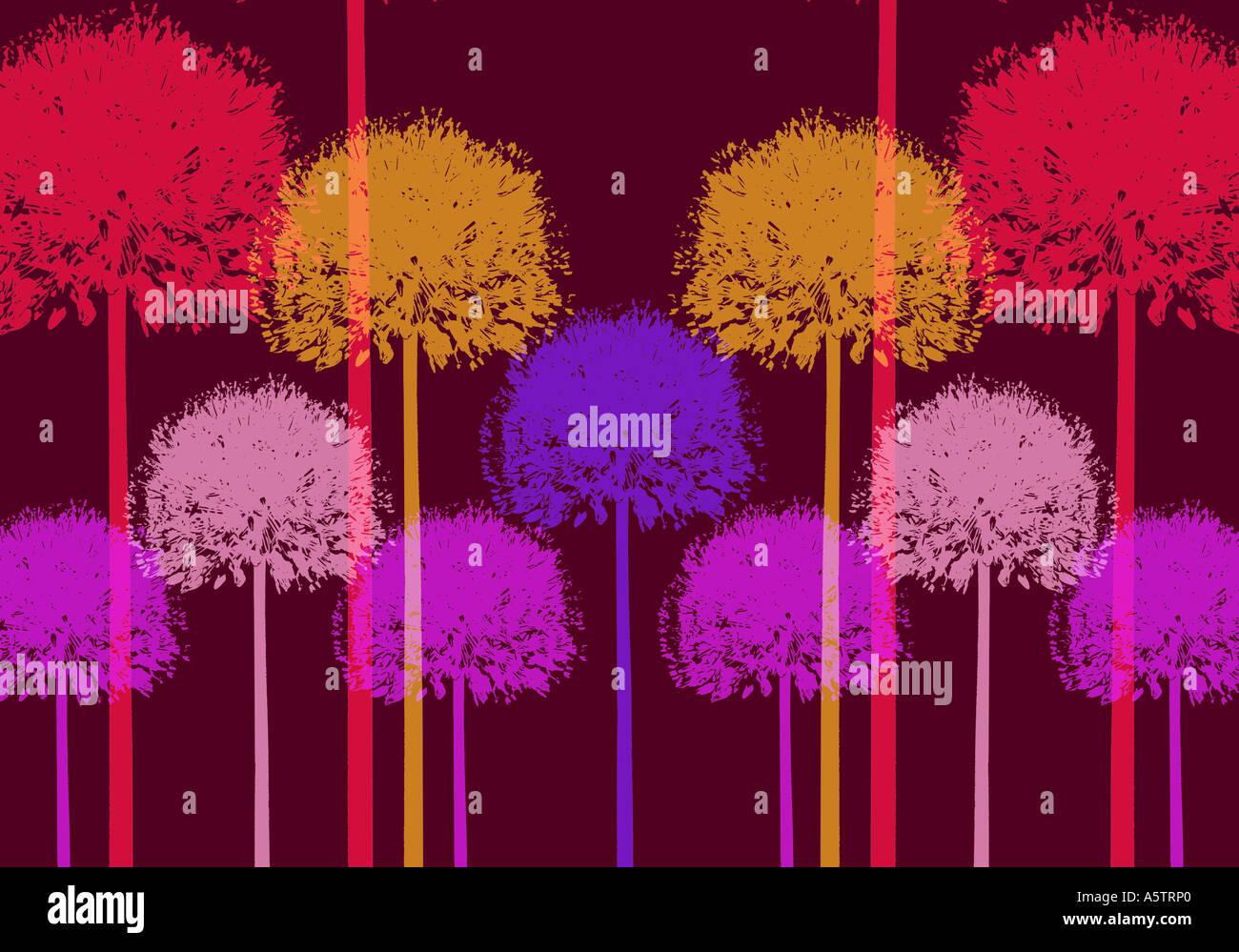 Graphic pattern - Allium illustration Stock Photo