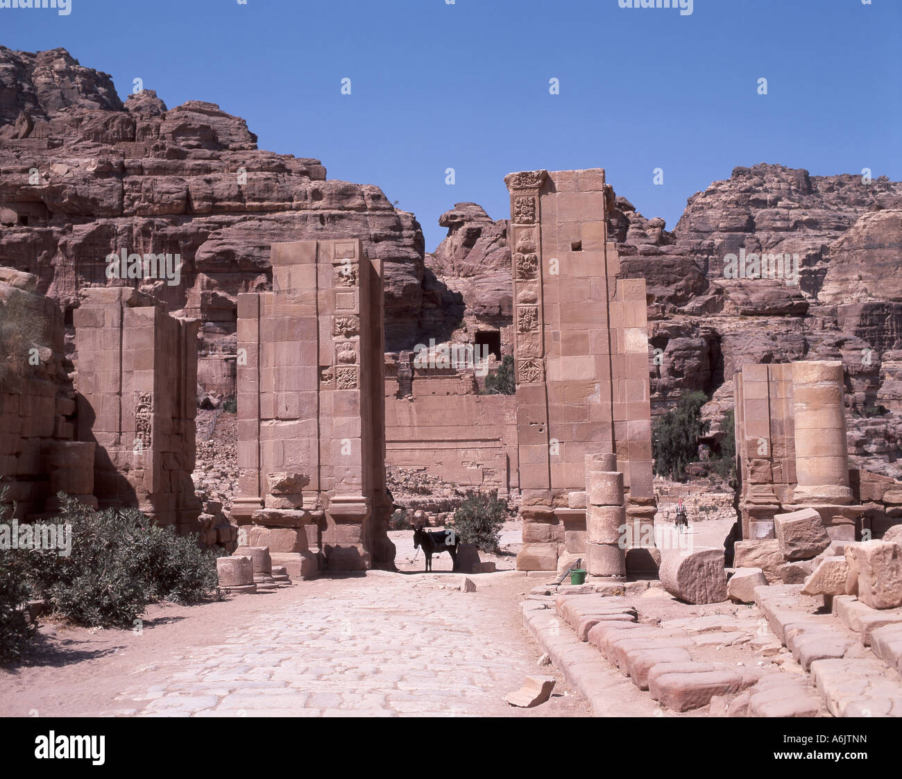 the temple of the winged lions ancient city of petra maan kingdom stock photo 11592704 alamy. Black Bedroom Furniture Sets. Home Design Ideas