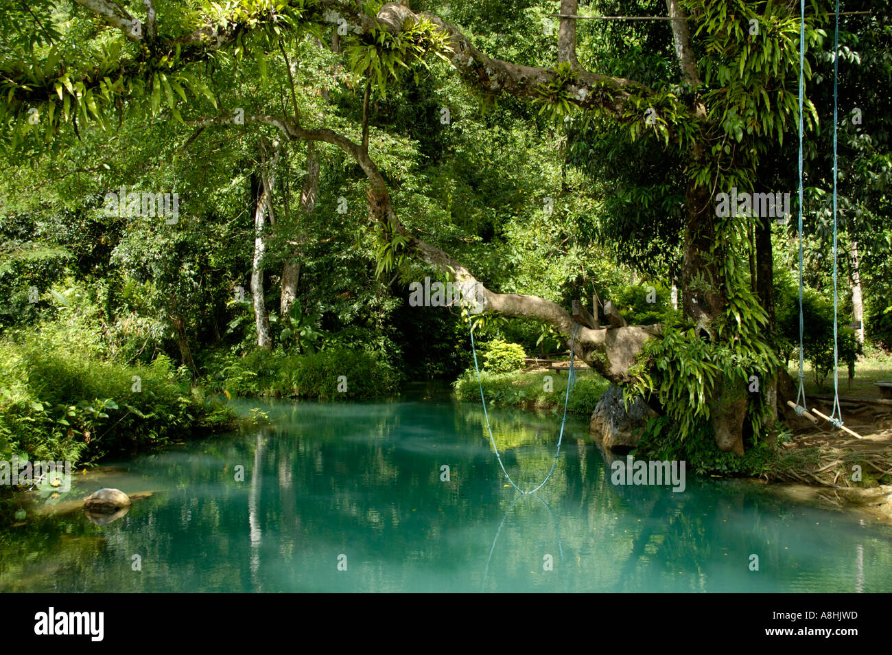 Jungle And Turquoise Blue Water Paradise River Near Vang