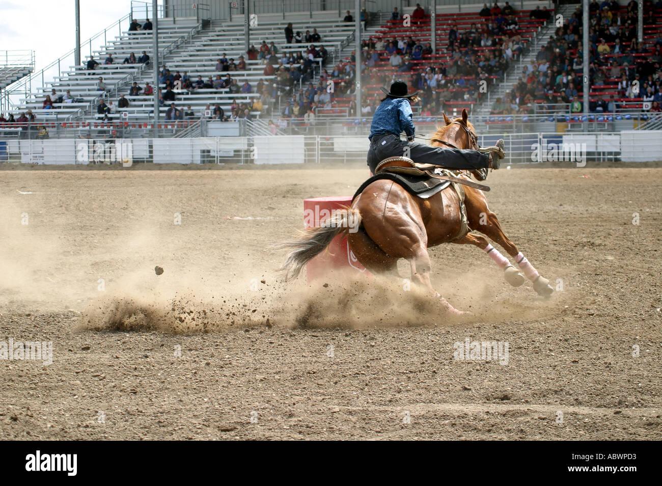 Rodeo Calgary Stampede Alberta Canada Barrel Racing Horse