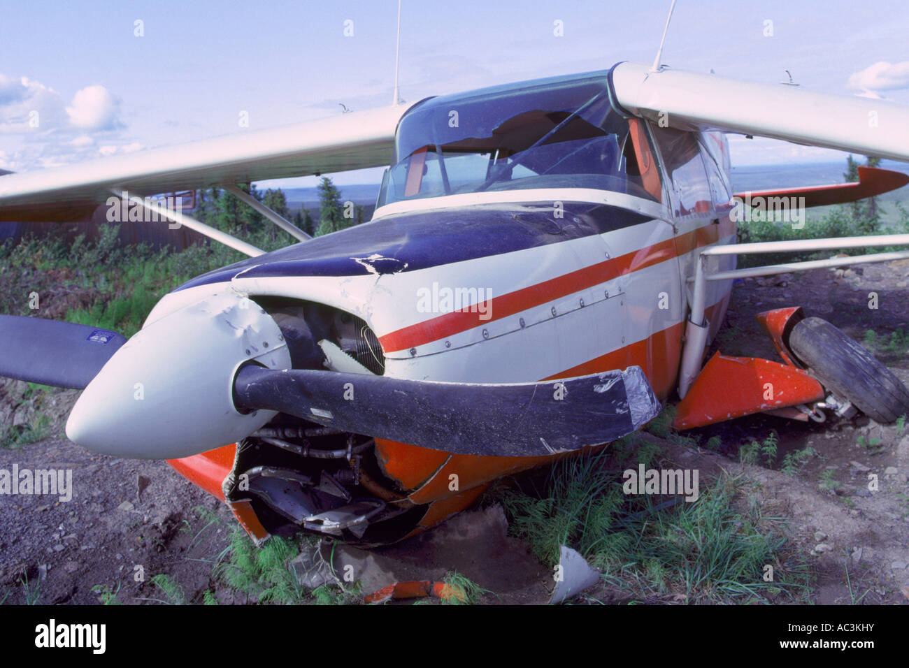 Fashion blogger plane accident