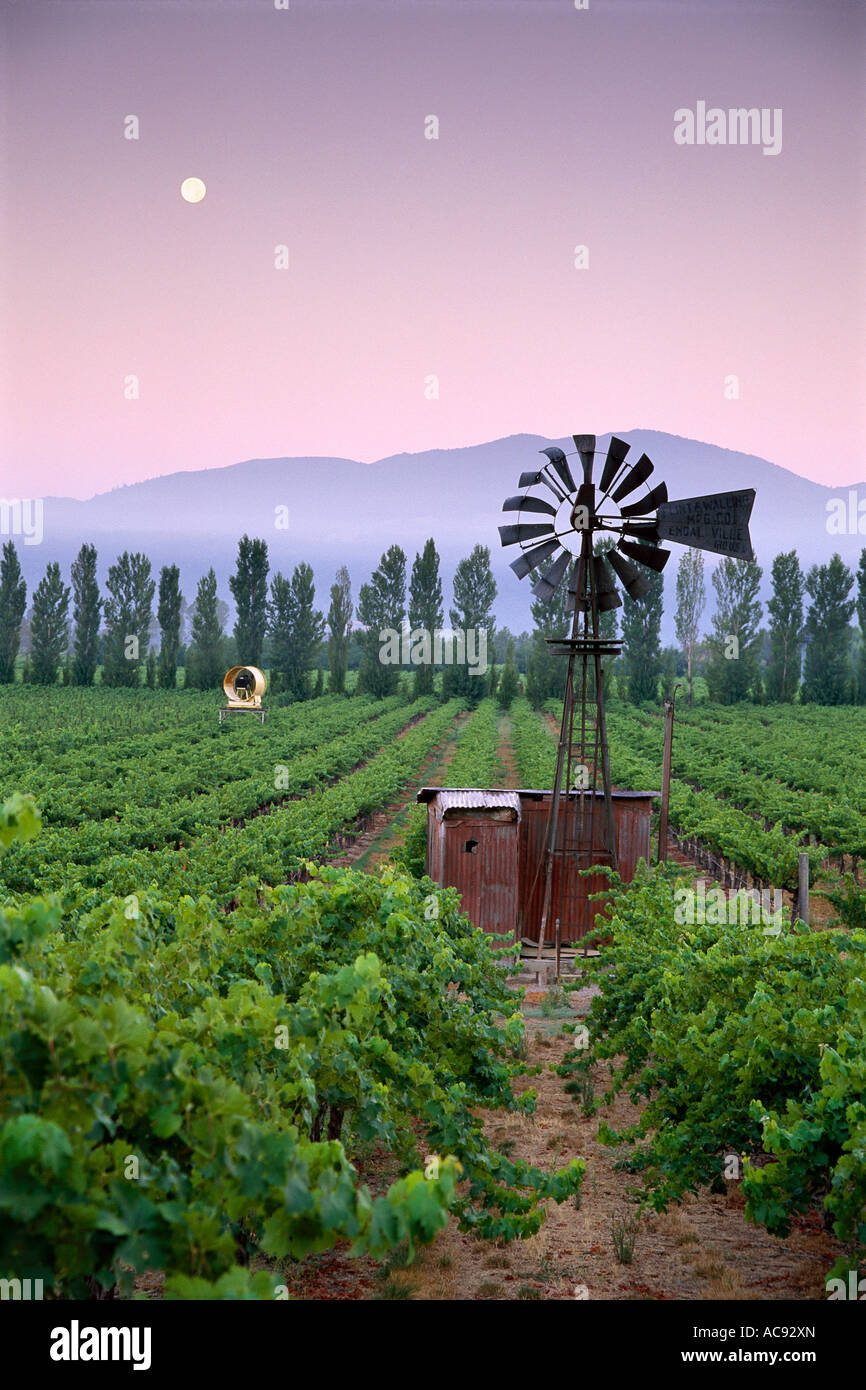old-time-windmill-in-the-wine-country-vi