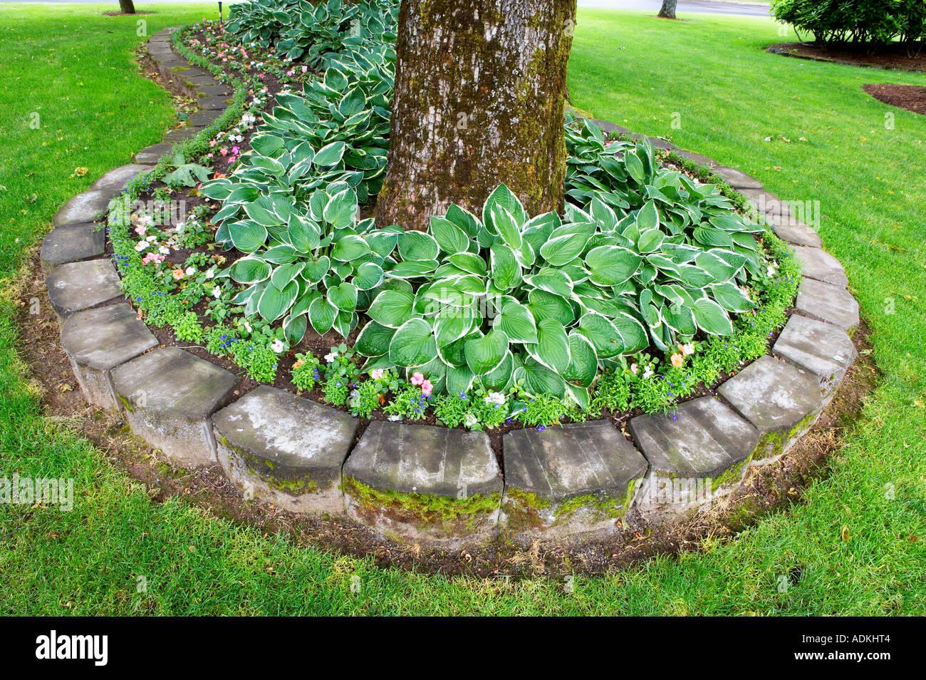 Stone planter with hosta and impatiens bonneville fish - Quand planter des framboisiers ...