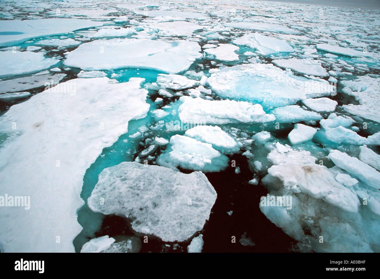 drift ice pack ice ice field actic ocean Treibeis Packeis Eisfeld Arktis Ozean Svalbard Spitzbergen Norway Stock Foto
