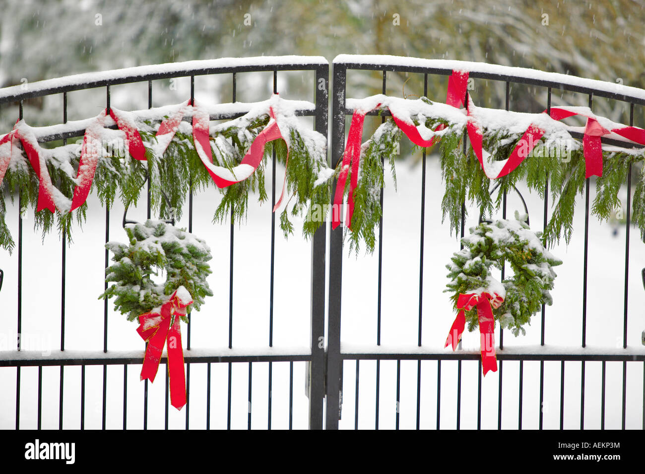 Gate With Christmas Wreaths And Decorations Stock Photo