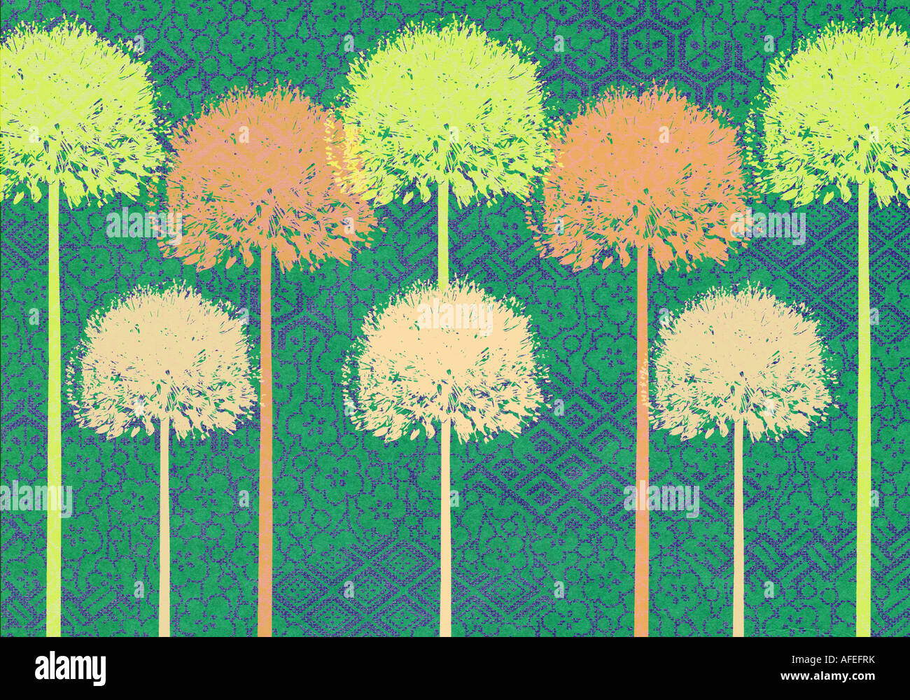 Step and repeat Illustration of Alliums Stock Photo