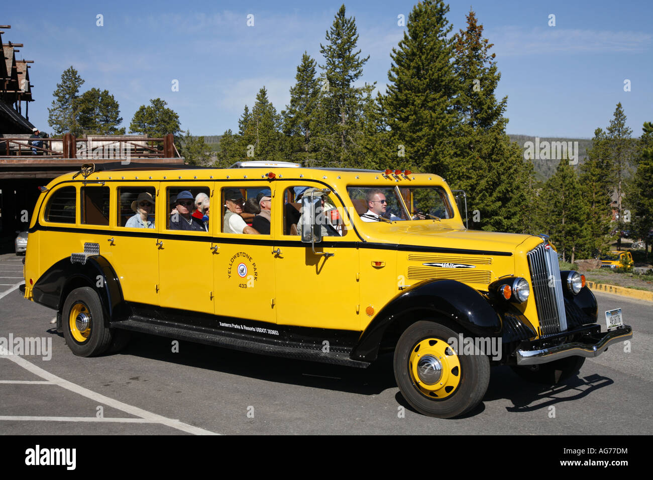 Historic Yellow Bus Tour Yellowstone