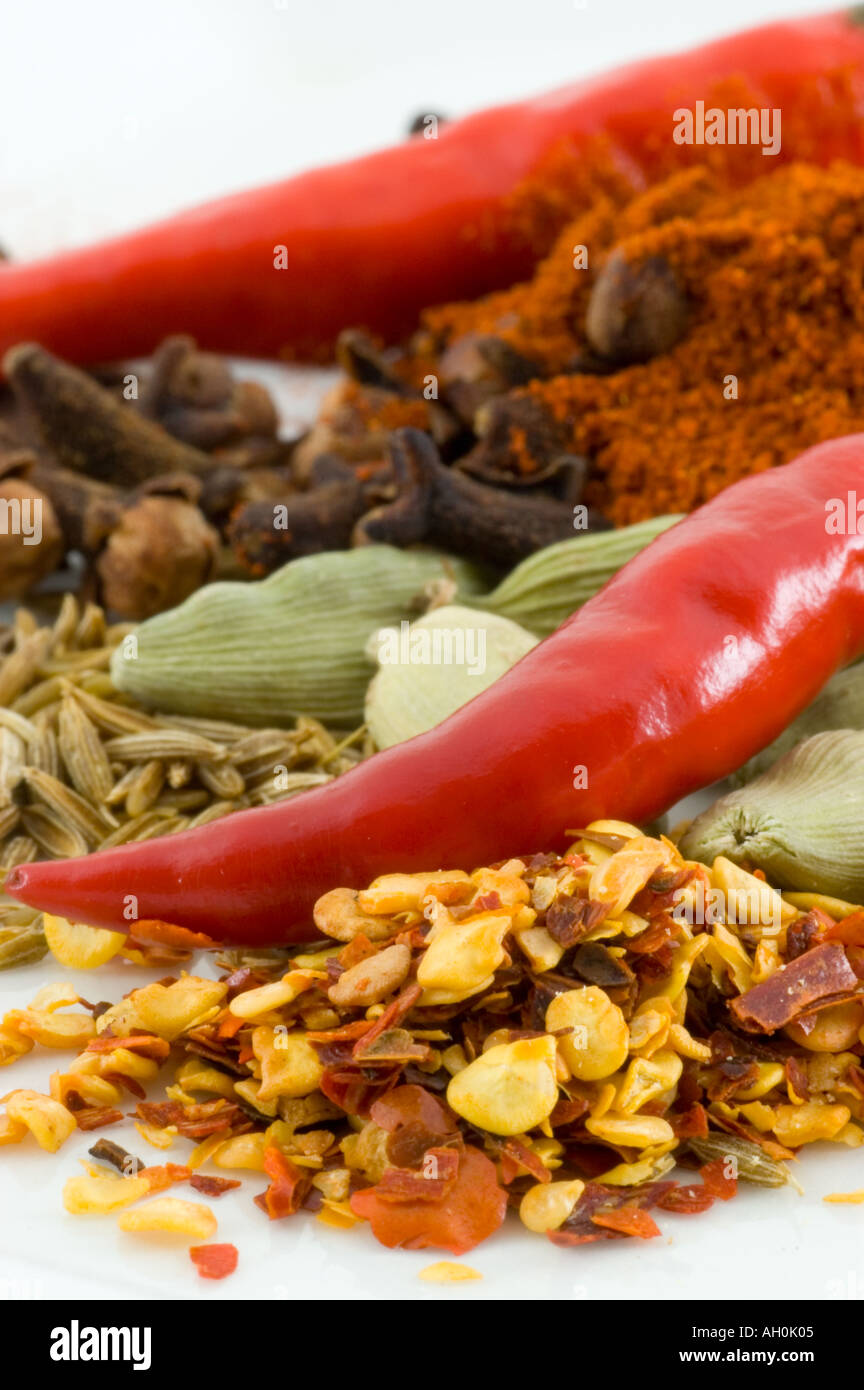 A selection of spices against a white background Stock Foto