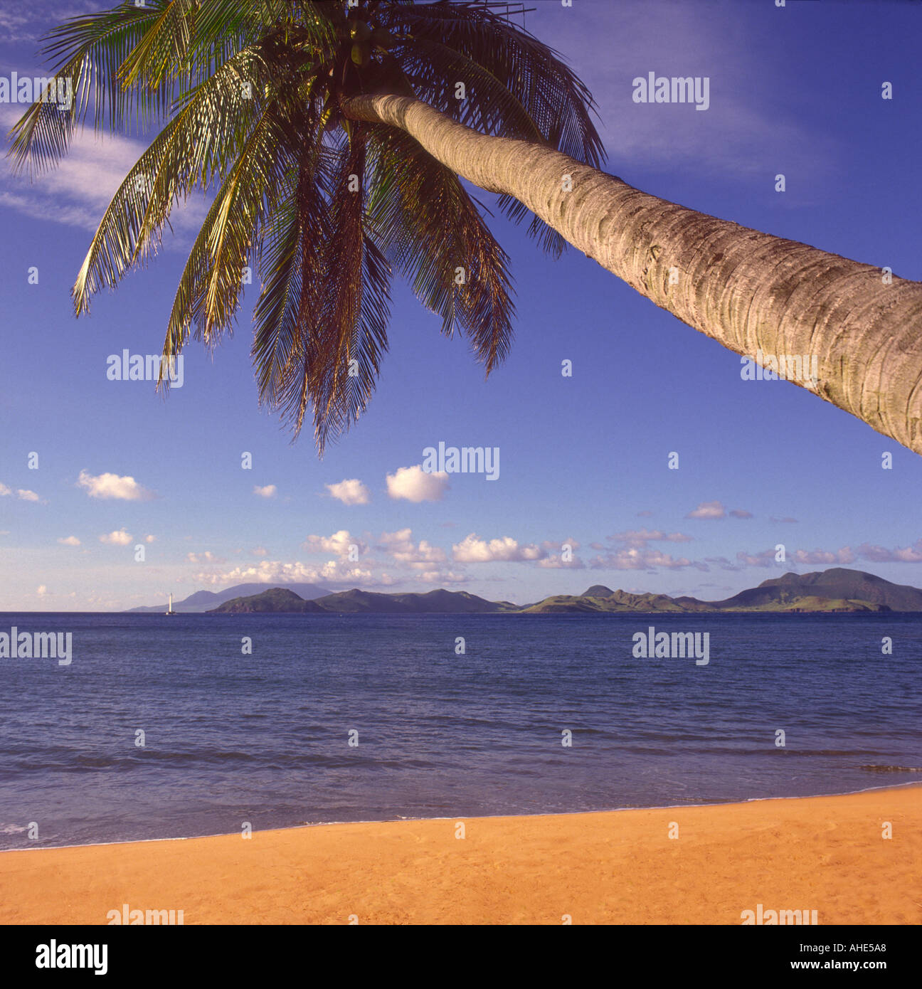 Deserted Island Beach: Typical Tropical Desert Island Style Beach Framed By