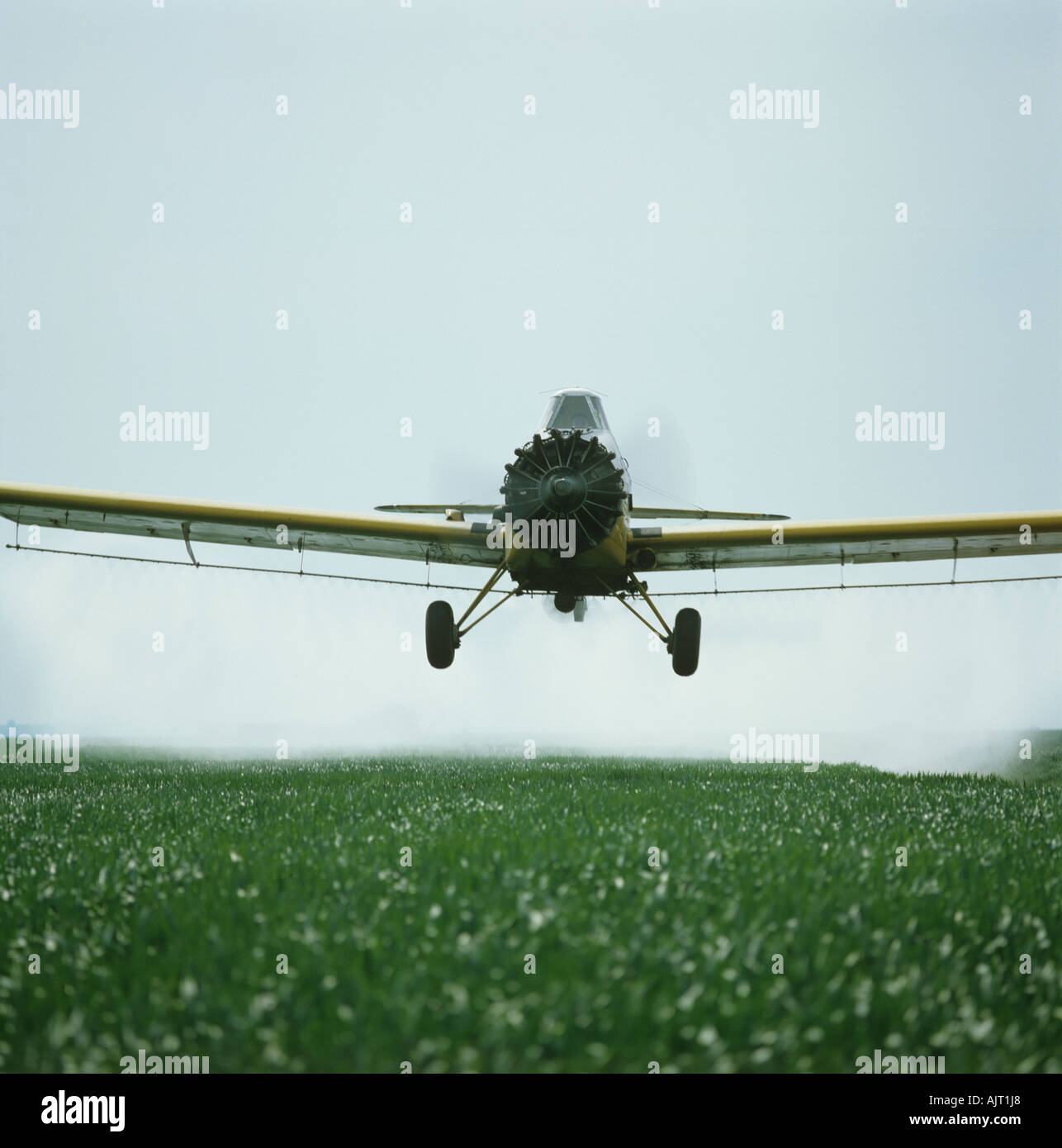 Thrush Commander aircraft spraying young wheat crop on the north Kent marsh farmland Stock Photo