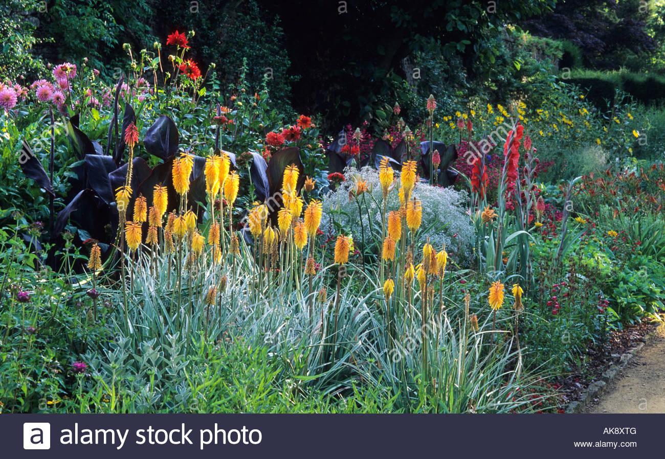 Hot Un Stock >> Munstead Wood Surrey Gertrude Jekyll garden main flower Hot colour Stock Photo, Royalty Free ...