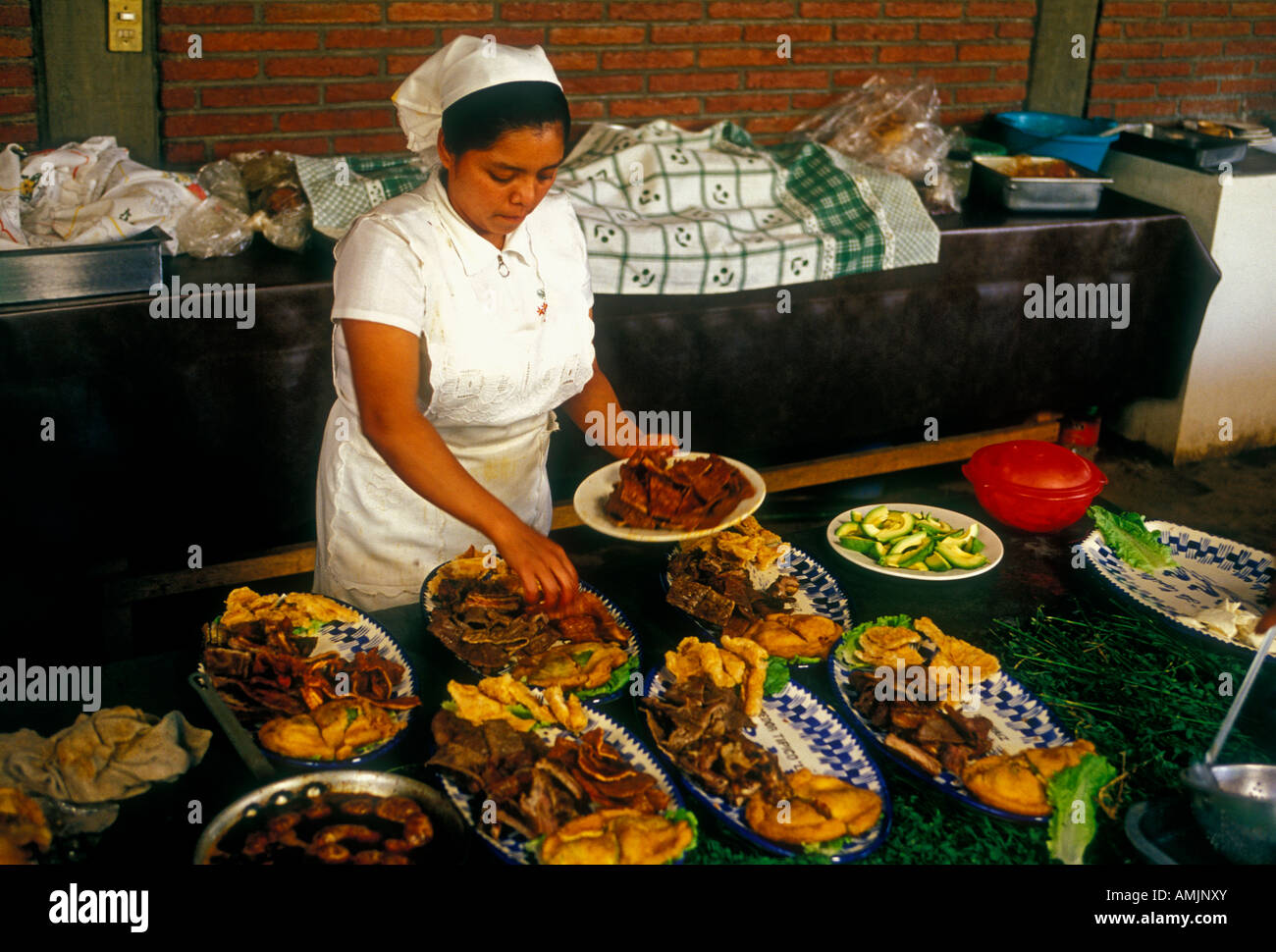 an introduction to the cuisine and food of mexico The traditional cuisine of mexico mexican food has some of the most well-known and loved dishes in the world mexican cuisine varies by region due to local climate, geography and ethnic differences among the indigenous inhabitants.
