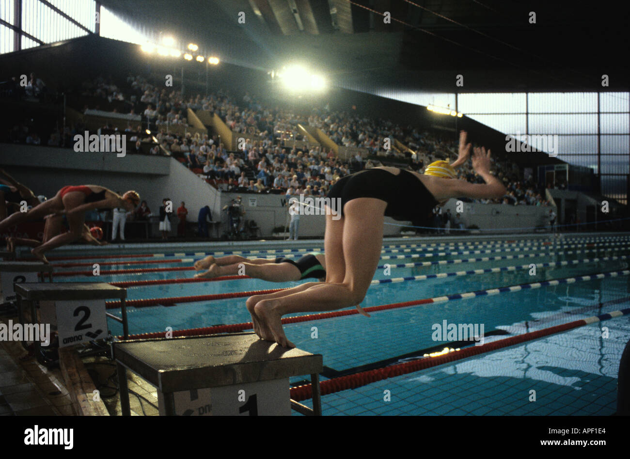 Women diving into swimming pool at start of race at leeds stock photo royalty free image for Leeds international swimming pool