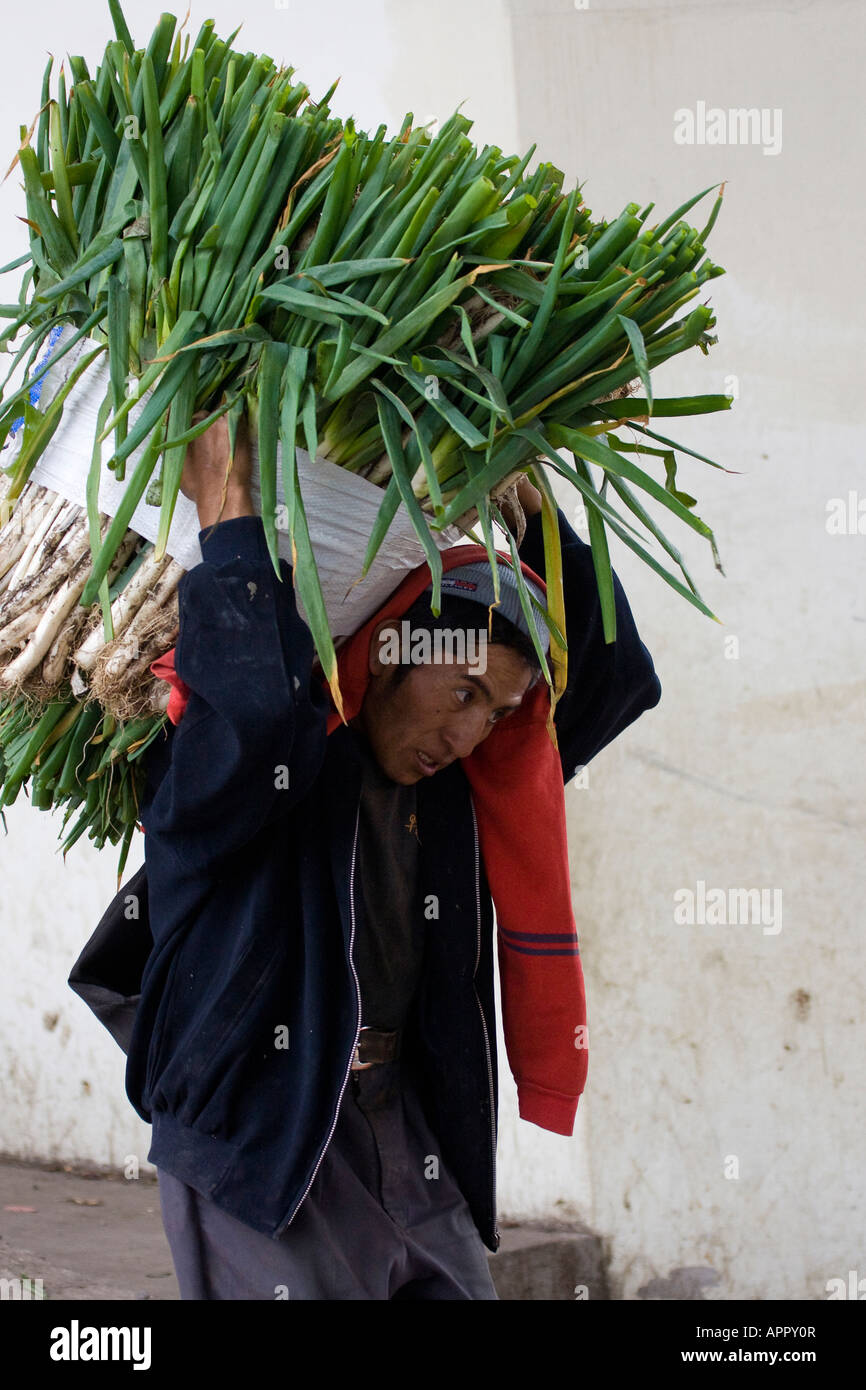 Ecuadorian man carrying heavy load of leaks on his back ...