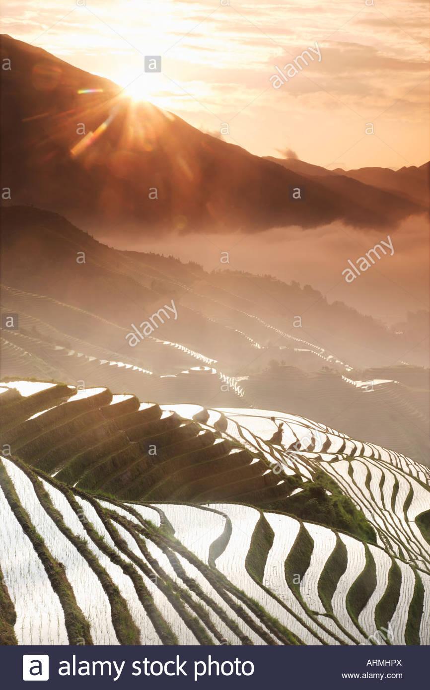 June sunrise, Longsheng terraced ricefields, Guangxi Province, China, Asia Stock Foto