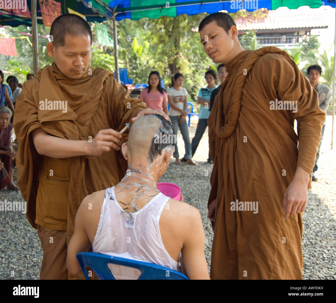 two thai buddhist monks use a razor to shave the head of a ...