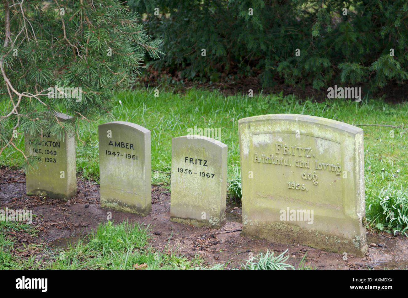 http://c7.alamy.com/comp/AXMDXX/pet-cemetery-at-madresfield-court-worcestershire-AXMDXX.jpg