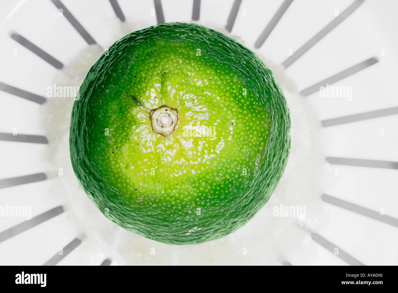Lime Pressed On Juicer Stock Foto