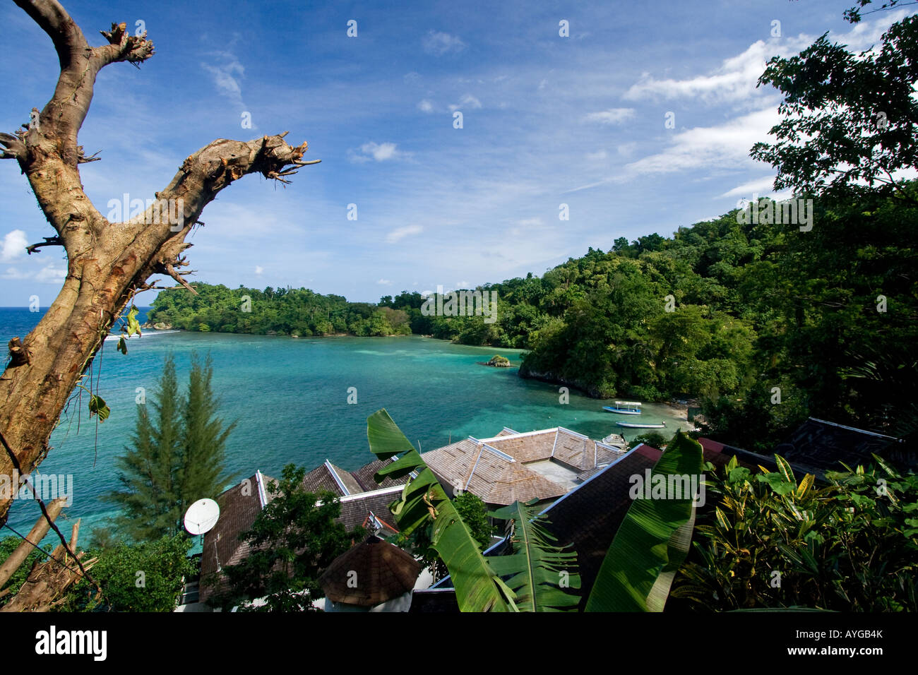 Jamaica Port Antonio Tropical landscape near blue lagoon Stock Photo