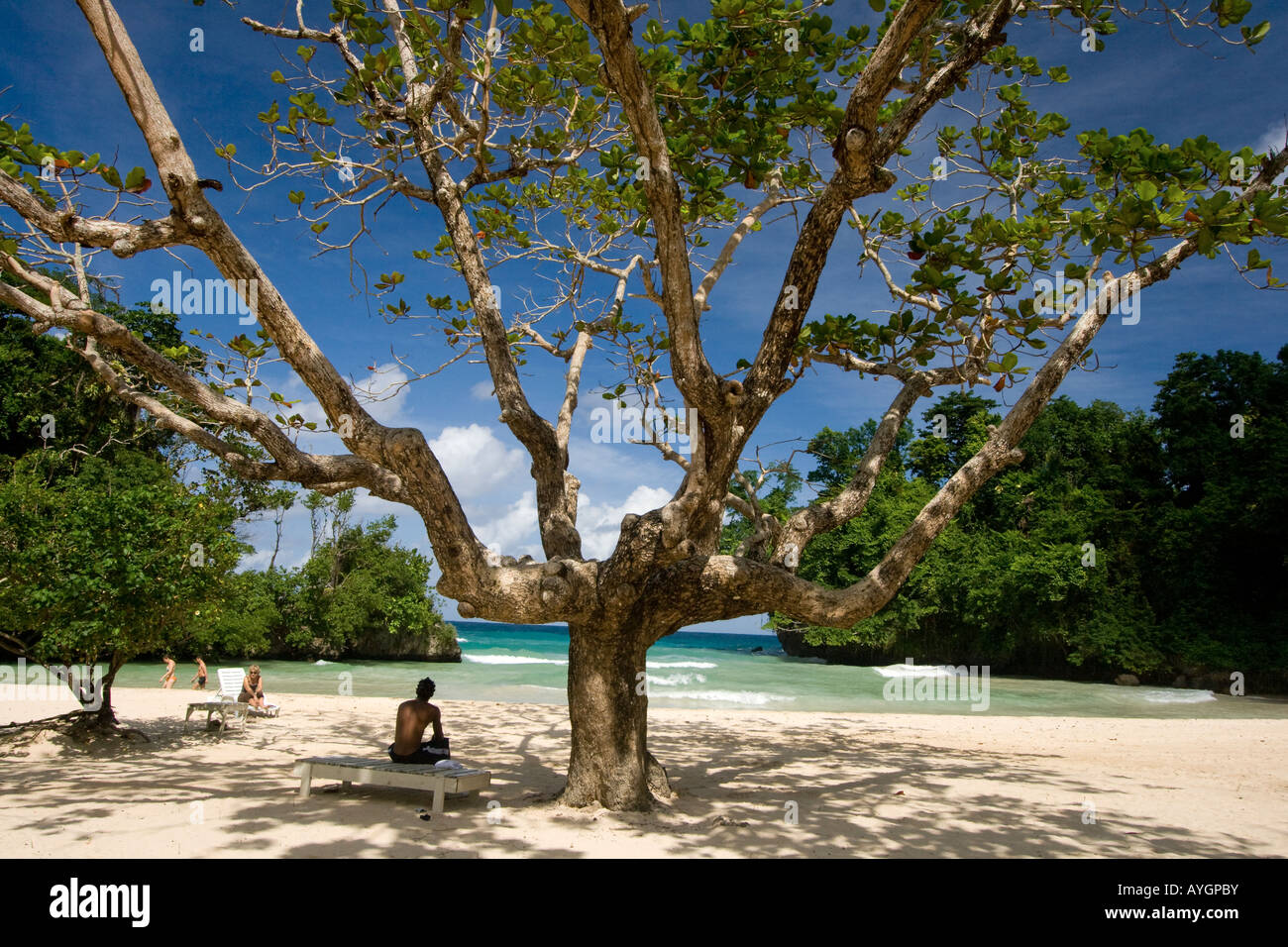 Jamaica Port Antonio Frenchmens Cove beautiful beach in a tropical garden with a mineral river Stock Photo