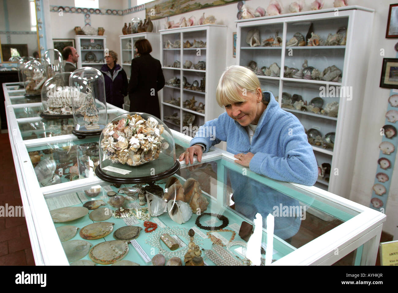 Exhibition Shell Vacations : Norfolk glandford the shell museum stock photo royalty