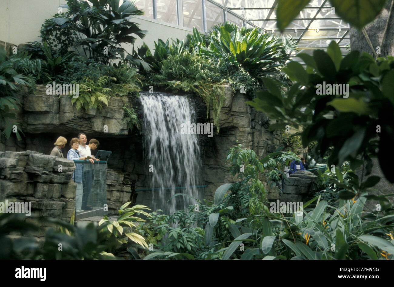 A waterfall in the tropical rainforest ecosystem of the for Biodome insectarium jardin botanique