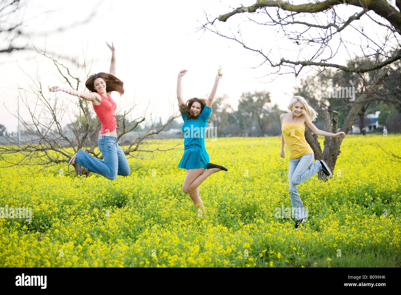 Three young women smiling and jumping in a yellow field of mustard plants. Stock Photo