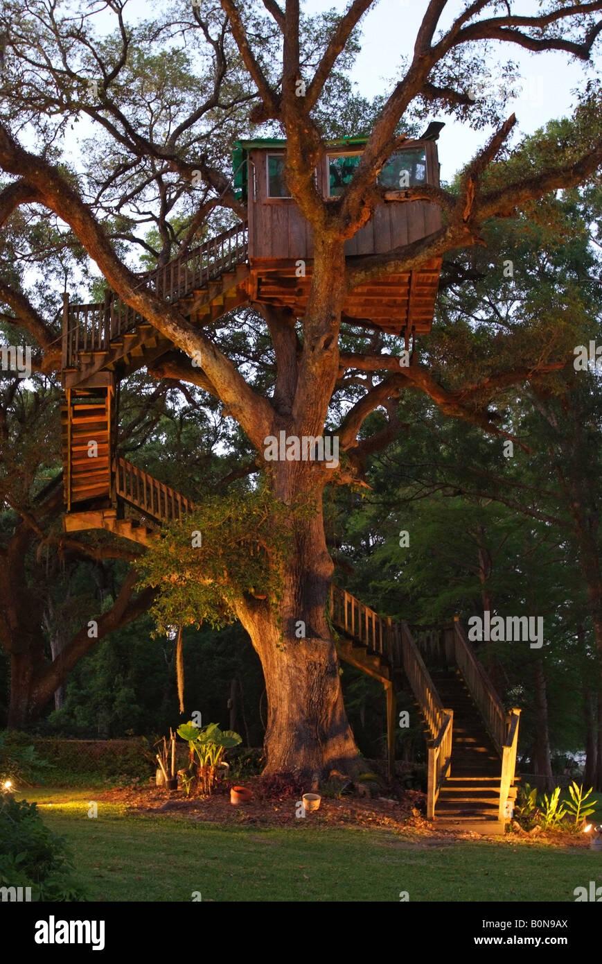 large-treehouse-in-an-old-oak-tree-in-st