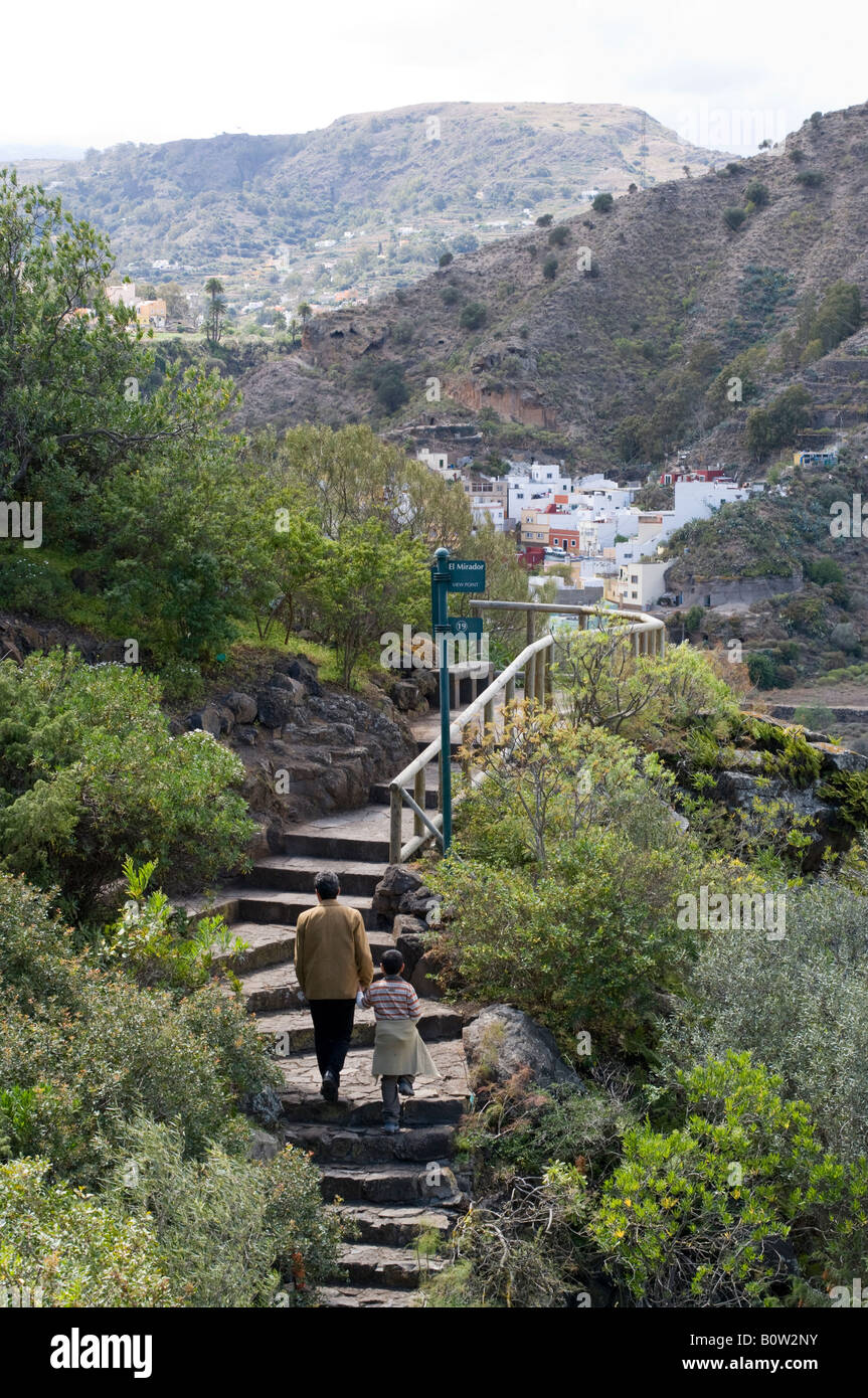 Gran canaria the national botanical gardens jardin for Jardin canario tafira