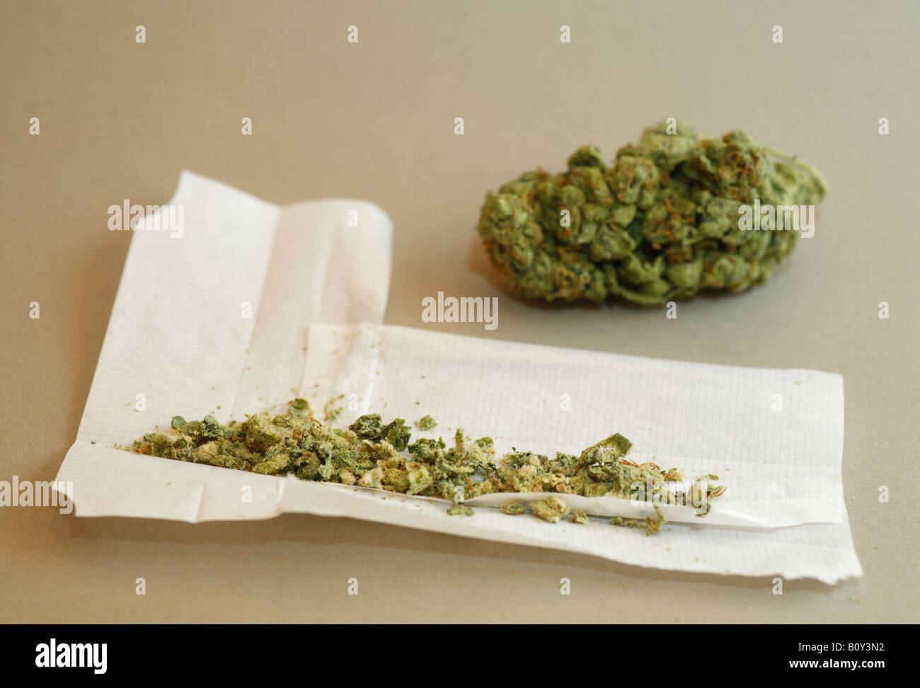 a-bud-of-skunk-cannabis-and-a-joint-bein