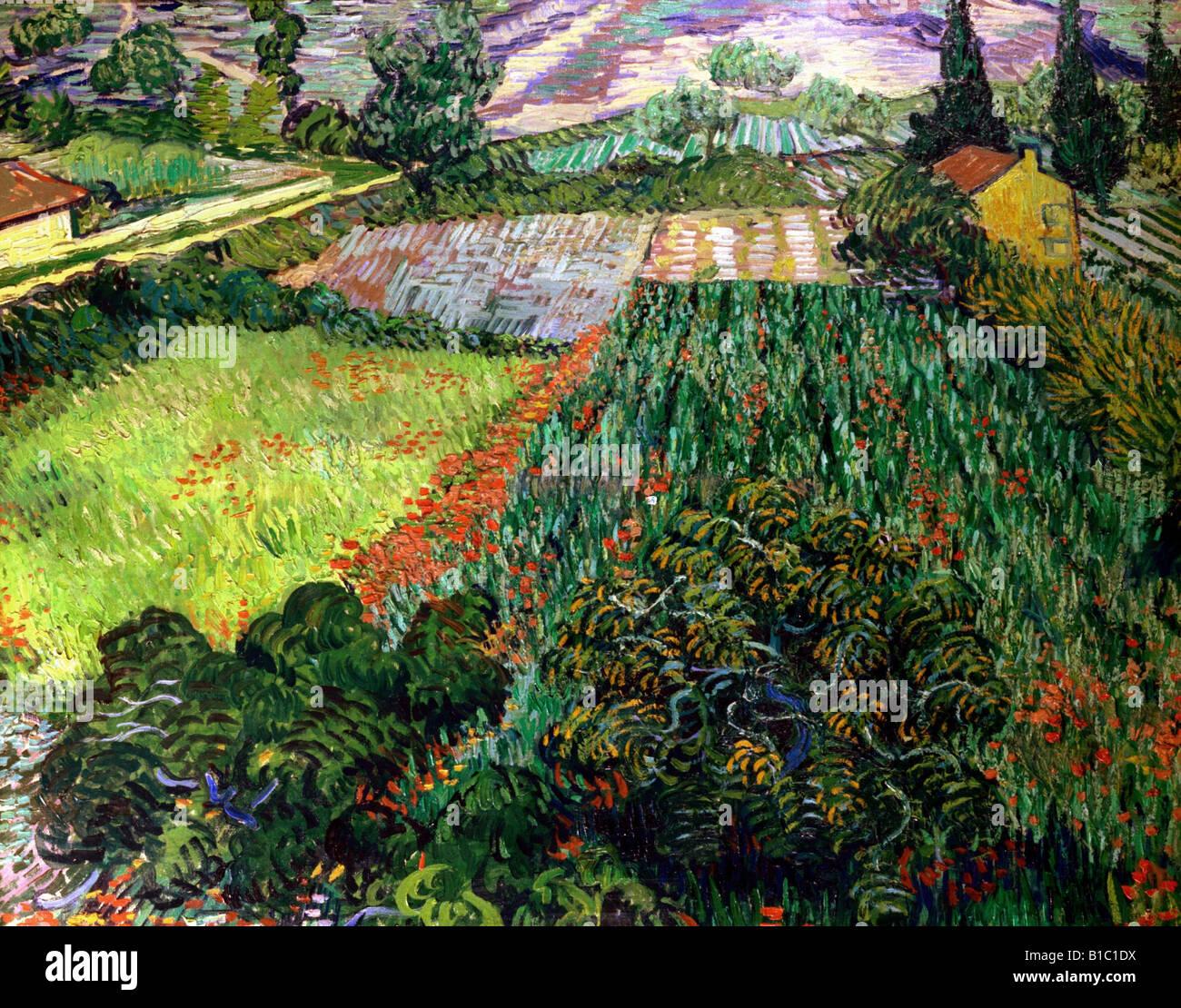 "fine arts, Gogh, Vincent van, (1853 - 1890), painting, ""poppy field,"", 1889 / 1890, oil on canvas, 71 cm x 91 cm, Stock Foto"