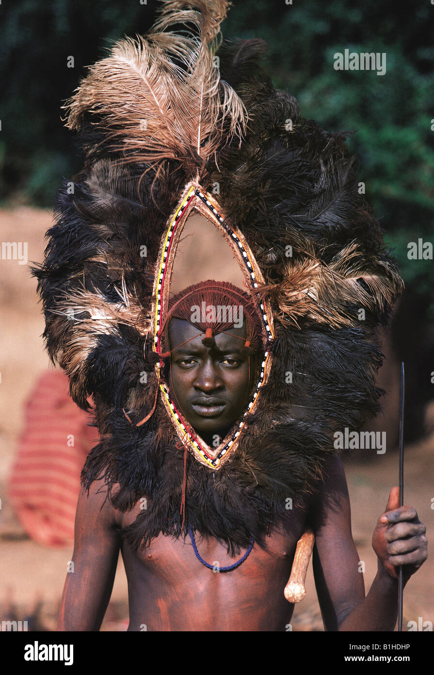 Maasai Moran With Spectacular Ostrich Feather Headdress