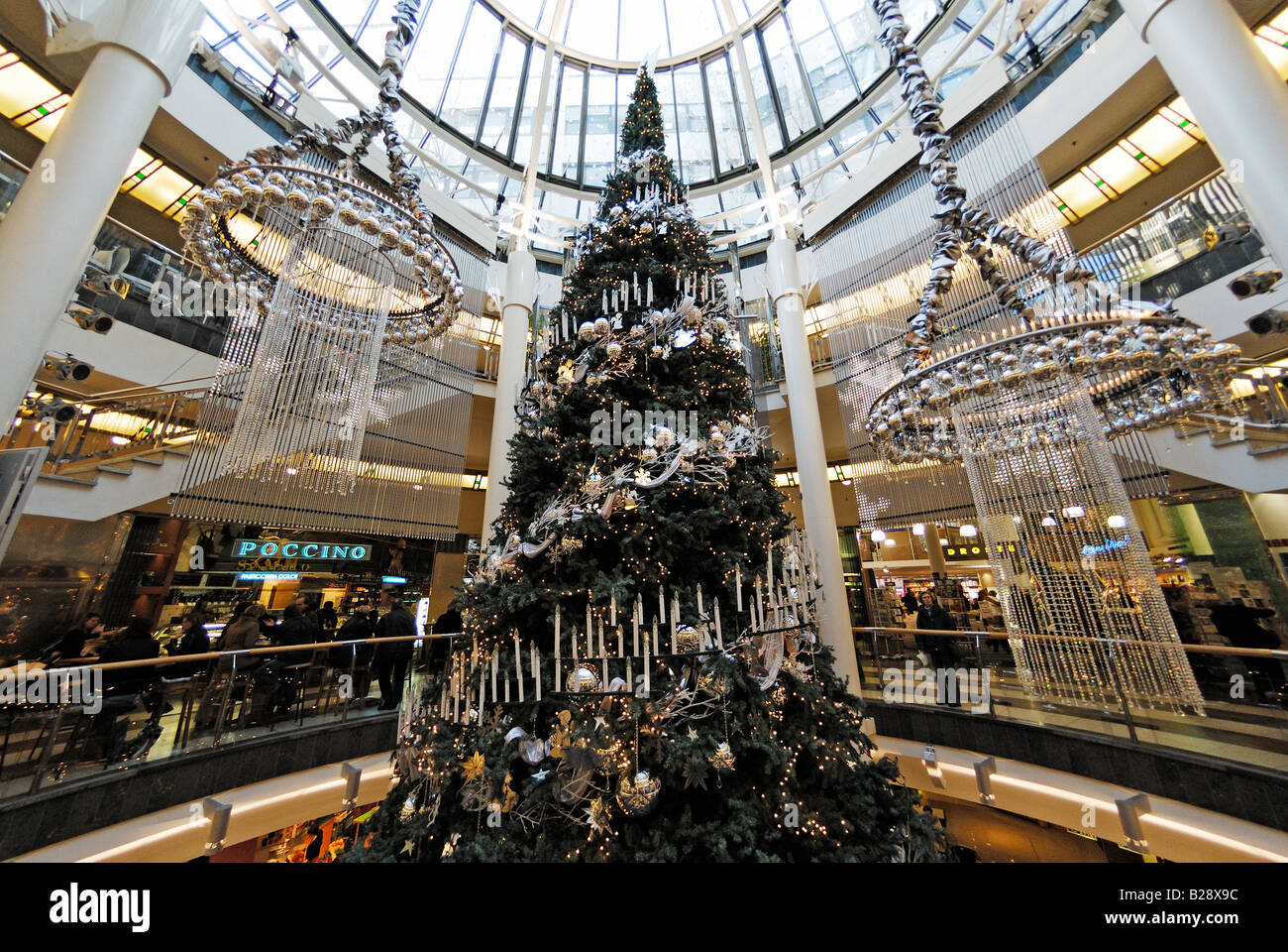 christmas tree amsterdam