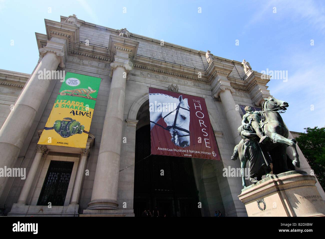 Natural History Museum Nyc Free Entrance