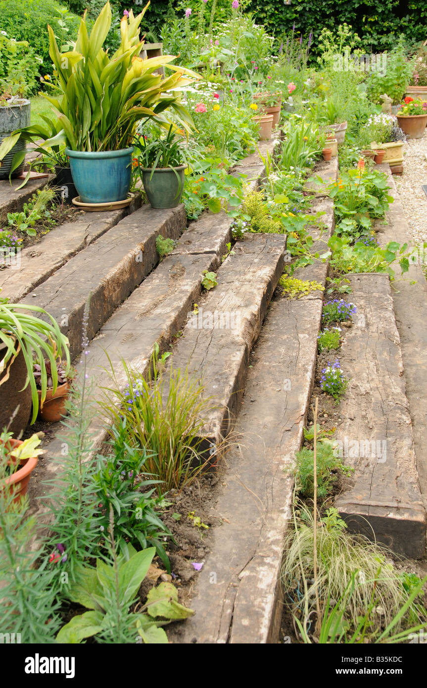 Garden wooden sleeper terrace and steps planted up with for Terrace steps