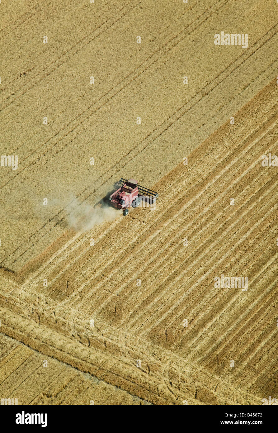 above aerial harvesting hay straw Central Valley California farming Stock Photo