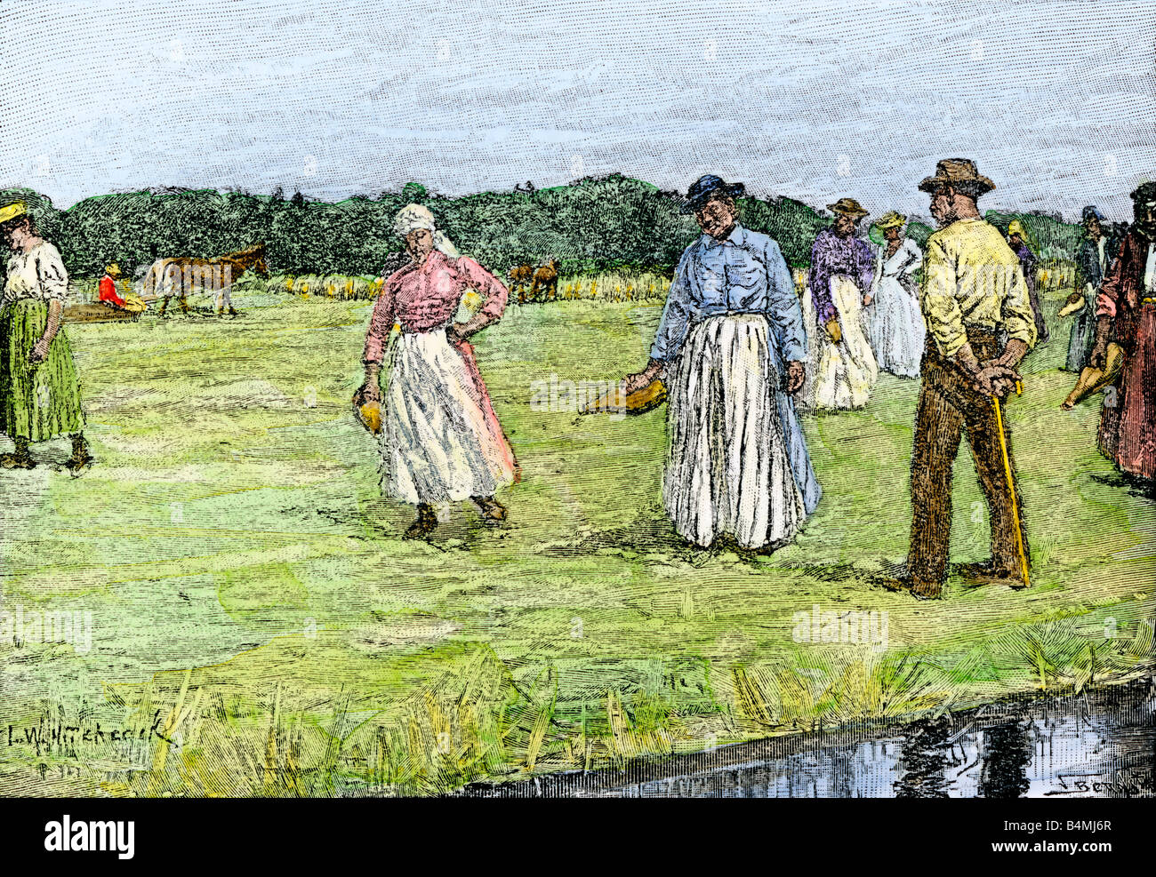Planting rice on a North Carolina plantation 1800s Stock Foto