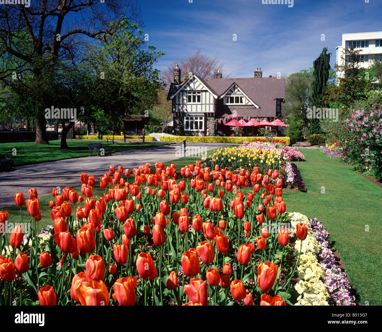 A scenic photo in christchurch new zealand of the spring for Landscape gardeners christchurch